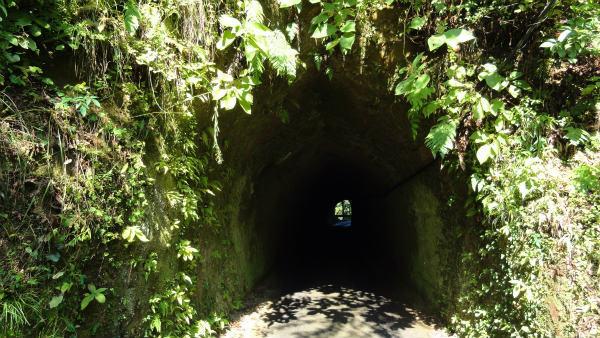 1.トンネル.jpg