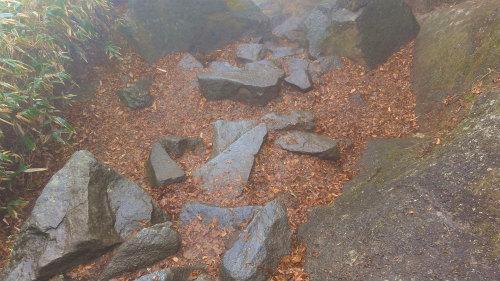 15.濡れた石.jpg
