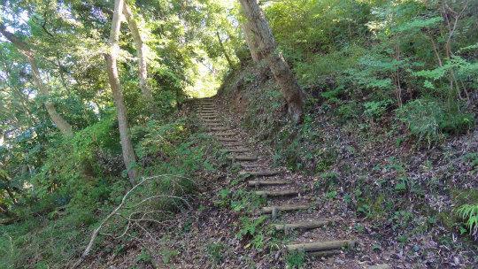 2.林間歩道2.jpg