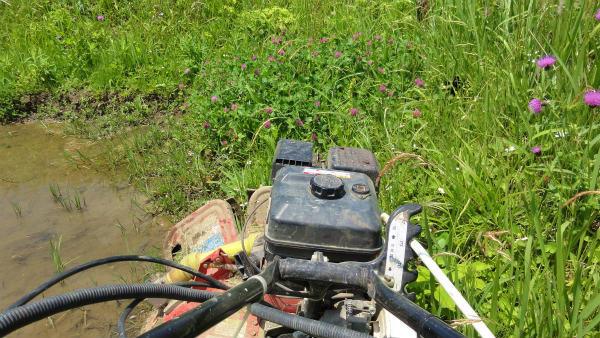3.草刈り.jpg
