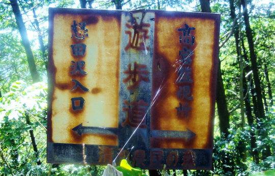 4.探鳥路山の神.jpg