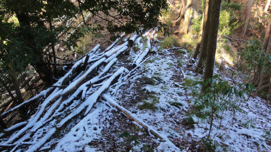 4.残雪.jpg