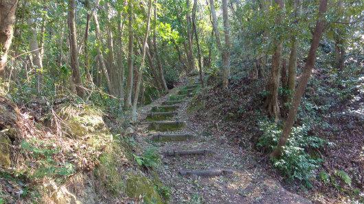 5.登山道.jpg