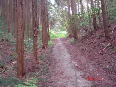 仮舗装DSC03506.jpg