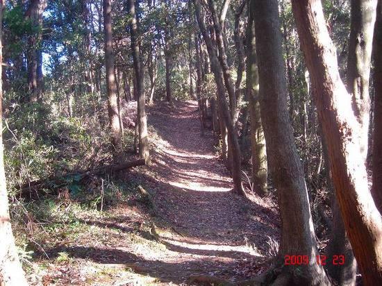 壬申山の道DSC01274.jpg