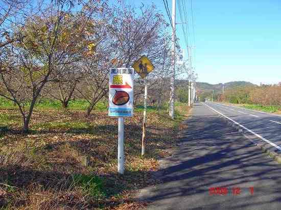 山滝野の道DSC00990.jpg