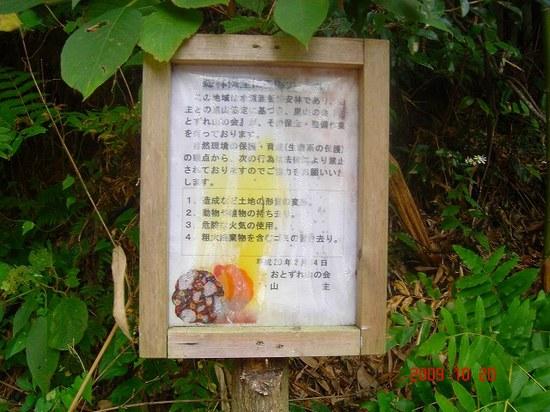 林道音信線5DSC09995.jpg
