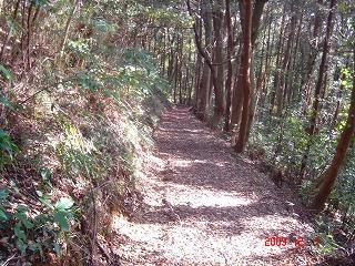 青葉高校の道DSC00960.jpg