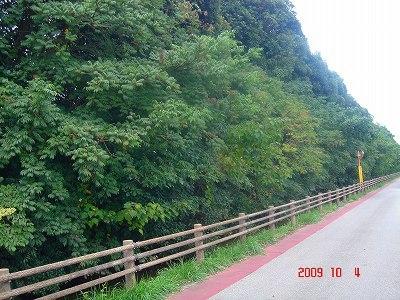 飯野陣屋DSC09653.jpg