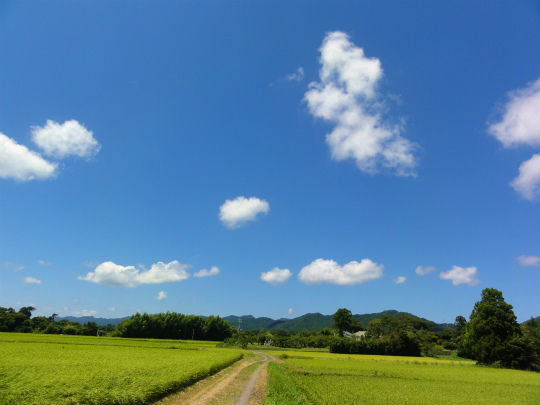 2.青空.jpg