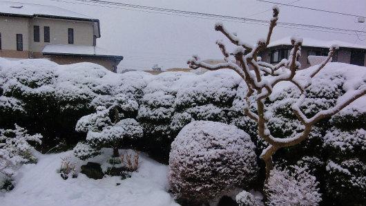 2014-02-11.jpg