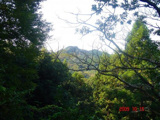 保田見峠から嵯峨山DSC09872.jpg